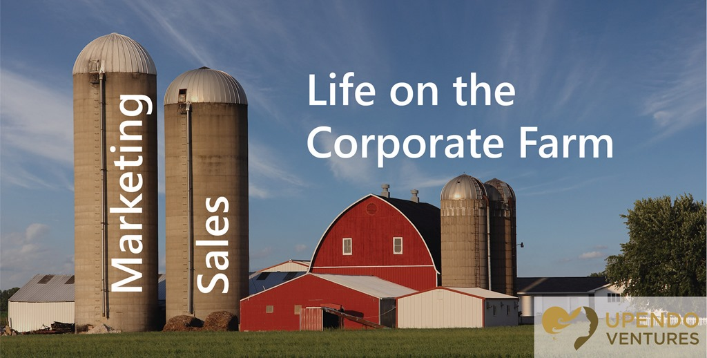 The Difference Between Sales and Marketing Life on the Cororate Farm